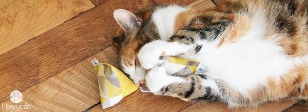 jouet-chat-cataire-bio-bandeau